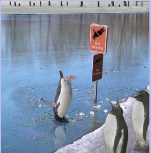 mergulho no gelo
